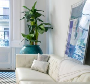 <span>Santa Caterina apartment</span><i>→</i>